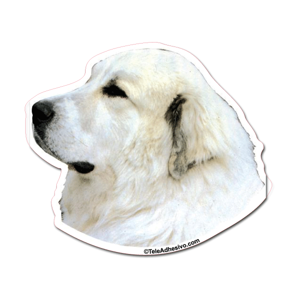 Aufkleber: Great Pyrenees