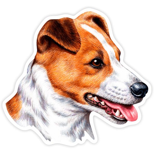 Aufkleber: Jack Russell Terrier