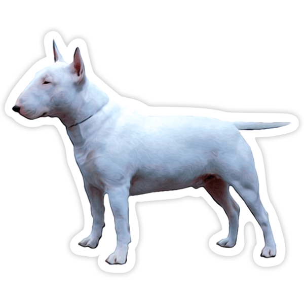 Aufkleber: Mini Bull Terrier