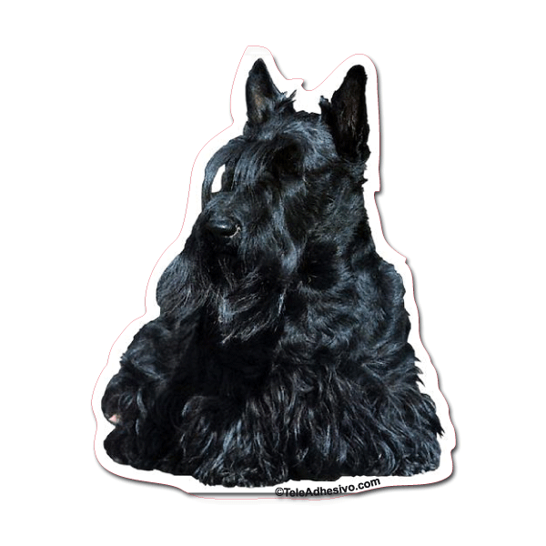 Aufkleber: Scottish Terrier