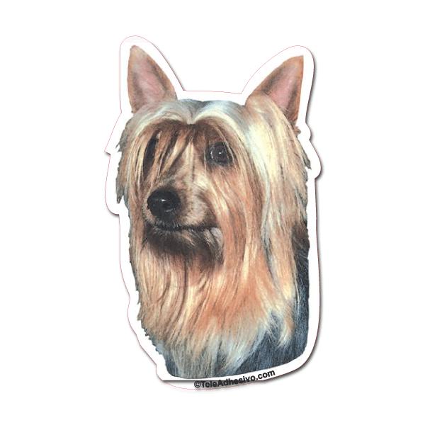 Aufkleber: Silky Terrier