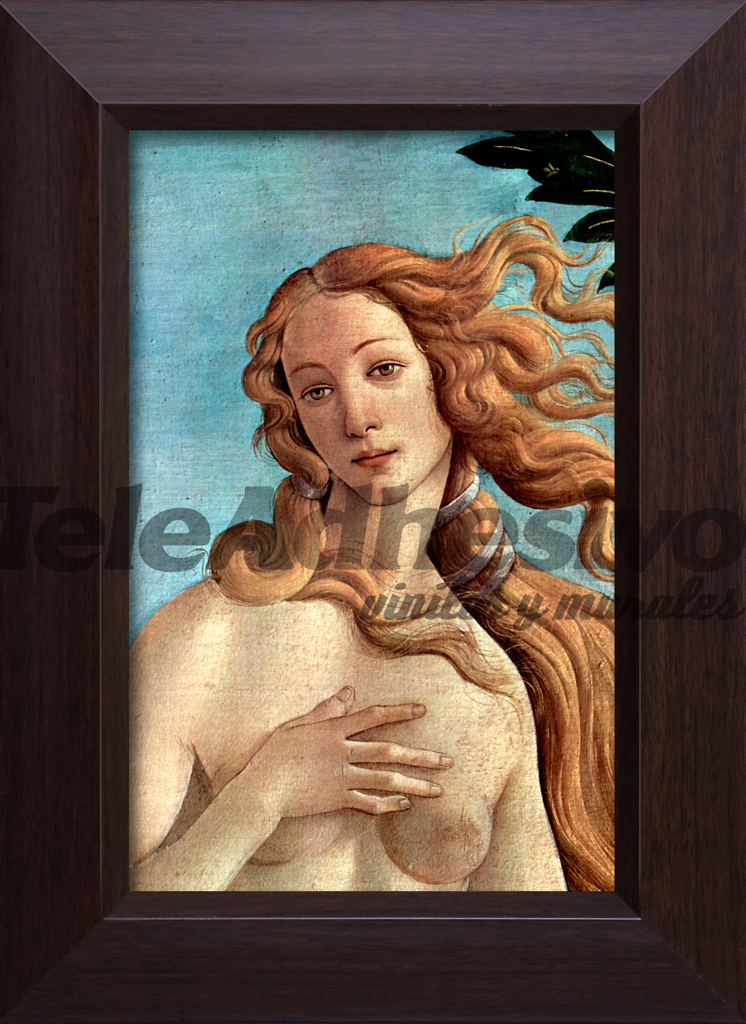 Wandtattoos: Die Geburt der Venus