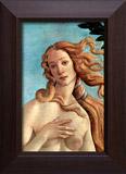 Wandtattoos: Die Geburt der Venus 3