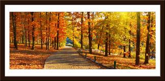 Wandtattoos: Herbst im Park 3