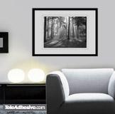 Wandtattoos: Wald Licht 4