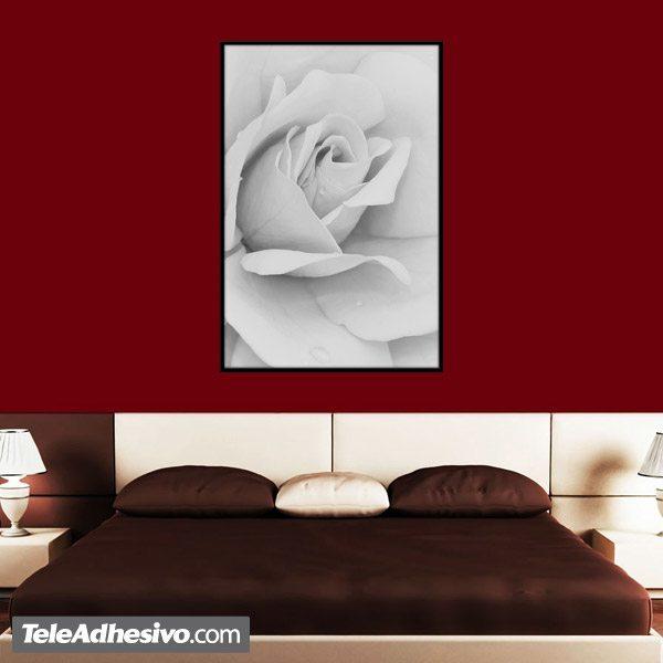 Wandtattoos: Weiße Rose