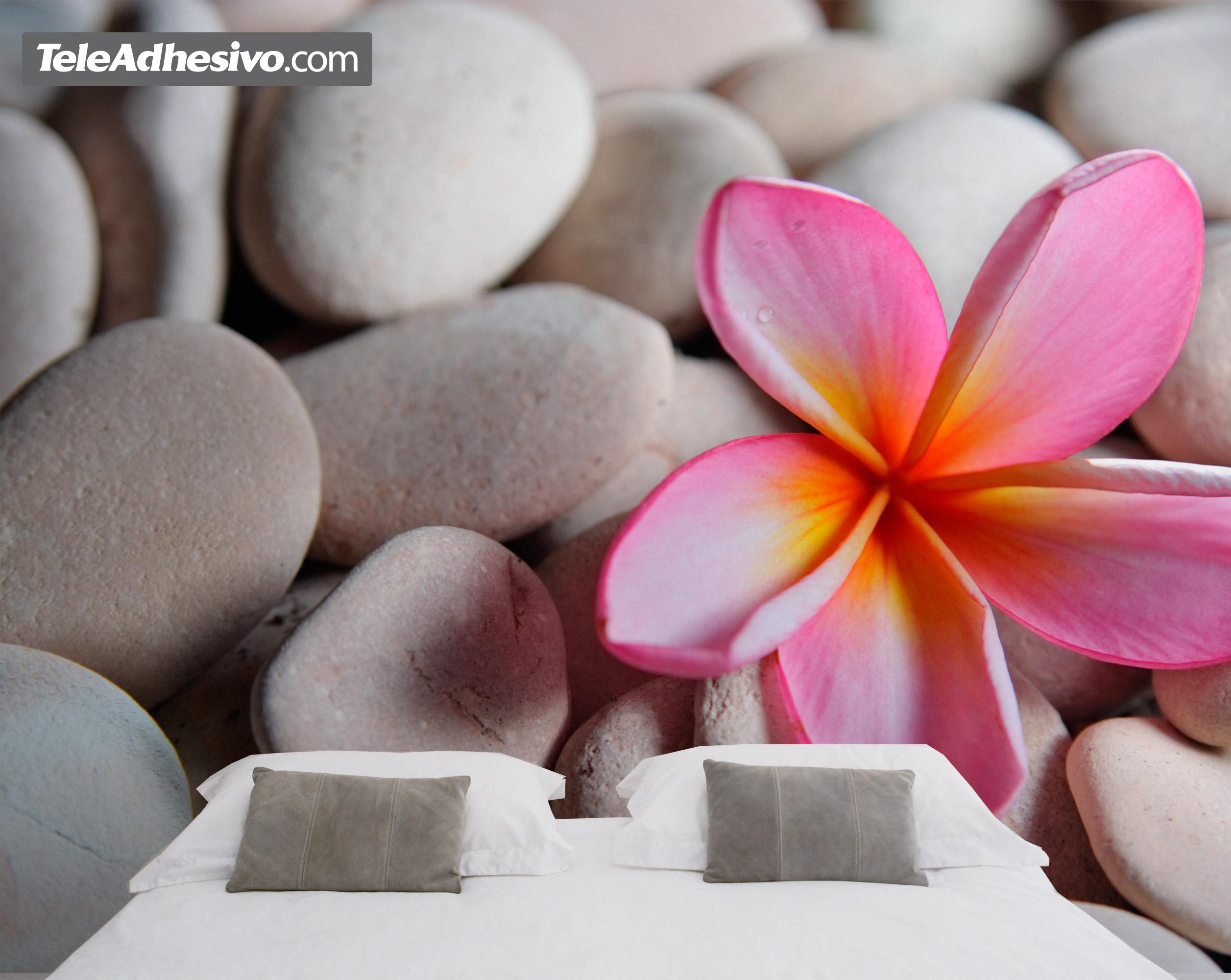 Fototapeten: Steine und Blumen