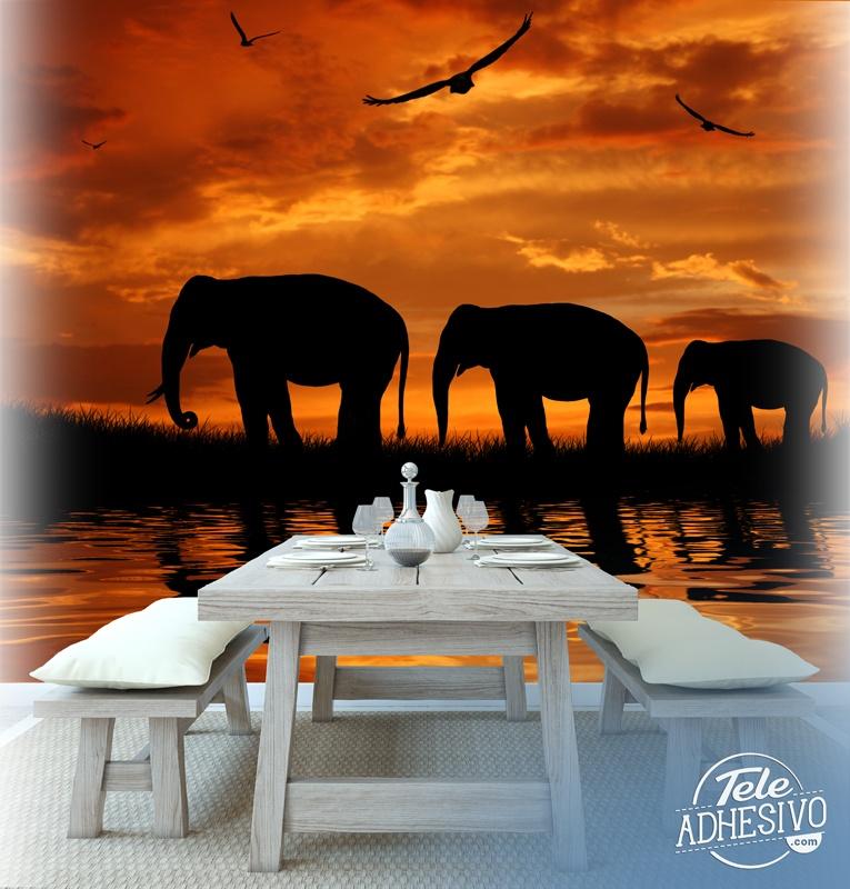Fototapeten: Elefantes