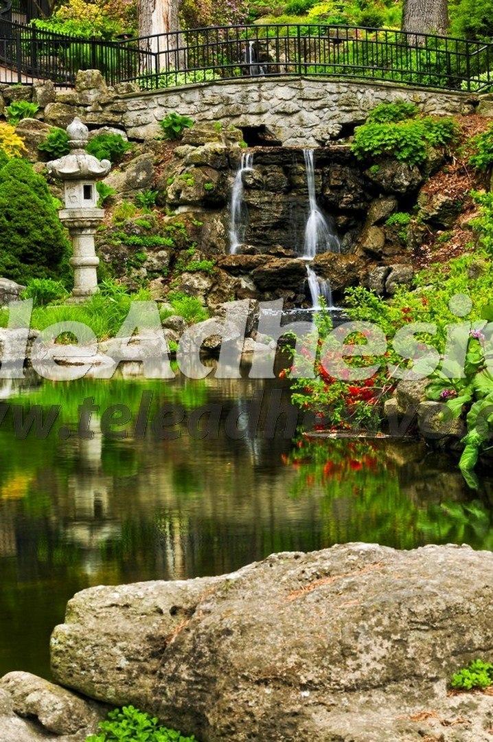 Fototapeten: Jardin imperial