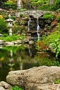 Fototapeten: Jardin imperial 3