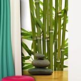 Fototapeten: Bambus und Steine 3