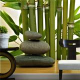 Fototapeten: Bambus und Steine 4