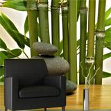 Fototapeten: Bambus und Steine 5