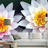 Fototapeten: Lotus-Blumen 3