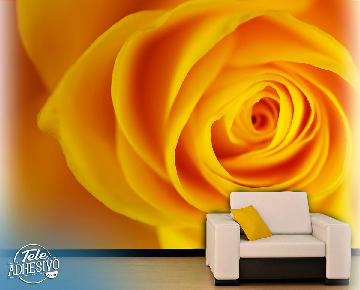 Fototapeten: Gelbe Rose