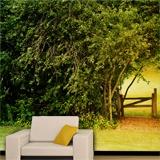 Fototapeten: Natürliche Wand 2