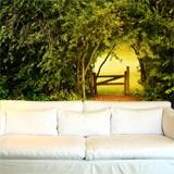 Fototapeten: Natürliche Wand 3
