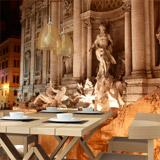 Fototapeten: Fontana di Trevi 5