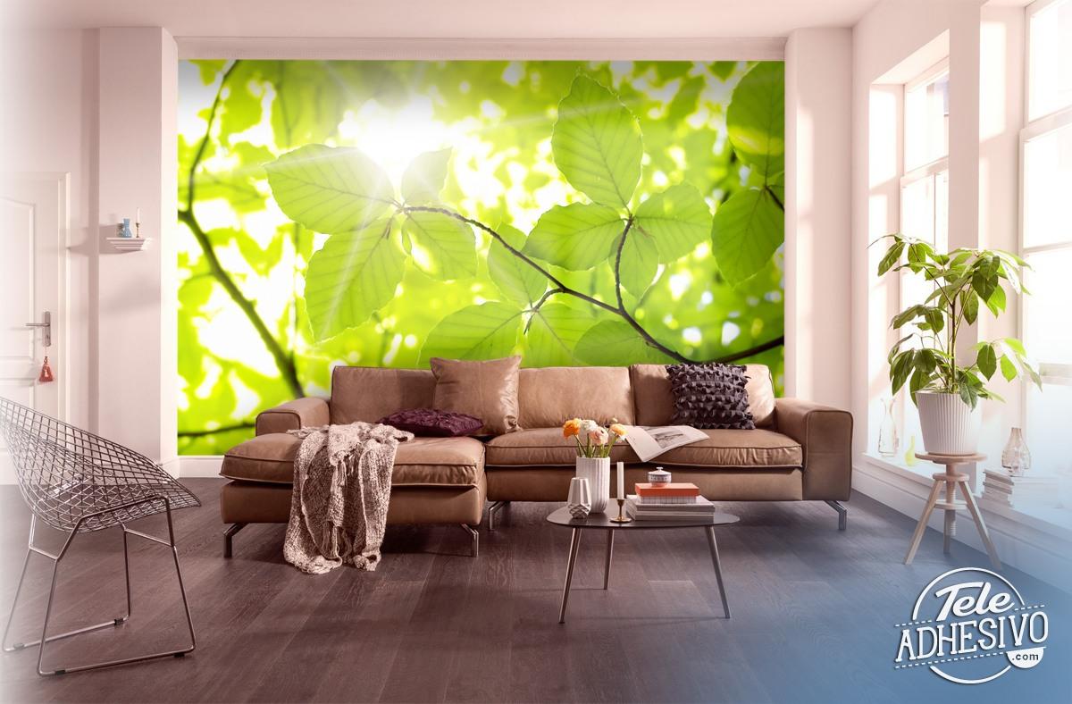 Fototapeten: Leaves