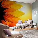 Fototapeten: Sunflower 2