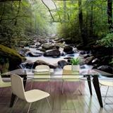 Fototapeten: Río en el bosque 1
