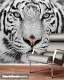 Fototapeten: White Tiger 4