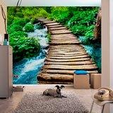Fototapeten: Puente de madera 2