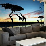 Fototapeten: Atardecer africano 2