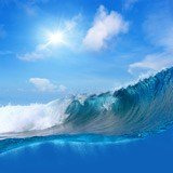 Fototapeten: surfen 2