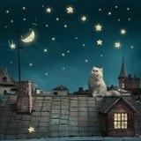Fototapeten: Gato en el tejado 3