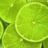 Fototapeten: Limes 2