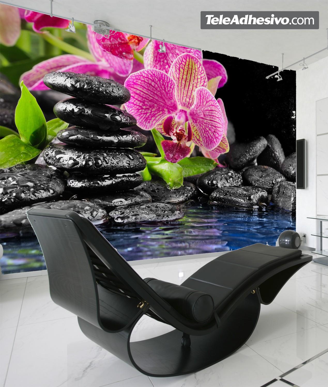 Fototapeten: Orchid und Basalt