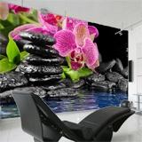 Fototapeten: Orchid und Basalt 3