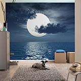 Fototapeten: Mond 3