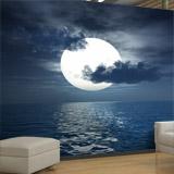 Fototapeten: Mond 4