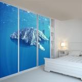 Fototapeten: Whale Shark 3