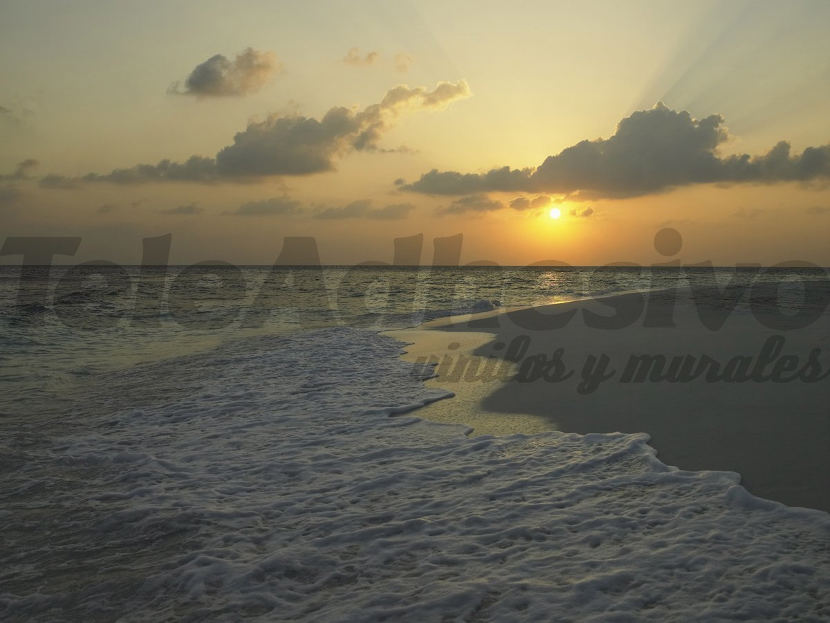 Fototapeten: grauen Strand
