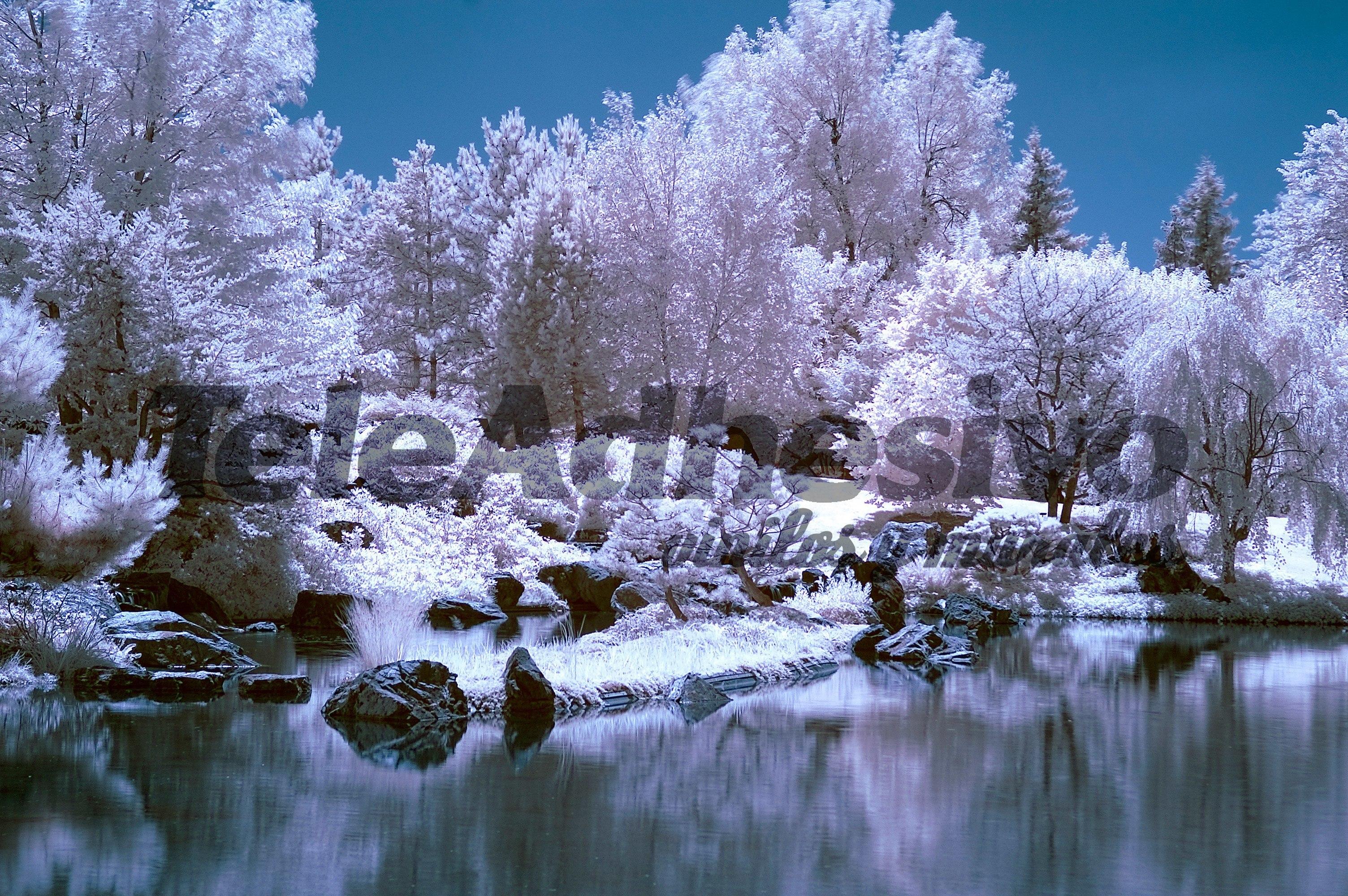 Fototapeten: Landschaft 37