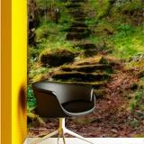 Fototapeten: Wald Treppen  3