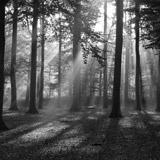 Fototapeten: Landschaft 56 3