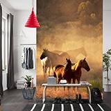 Fototapeten: Herden von Pferden 2