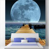 Fototapeten: Moon 4