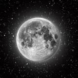 Fototapeten: Mond 2