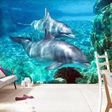 Fototapeten: Dolphins 2