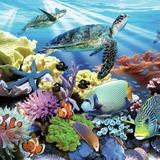 Fototapeten: Meeresboden  2