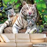 Fototapeten: Albino Tiger 3
