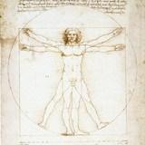 Fototapeten: Vitruvian Mann_Da Vinci 3