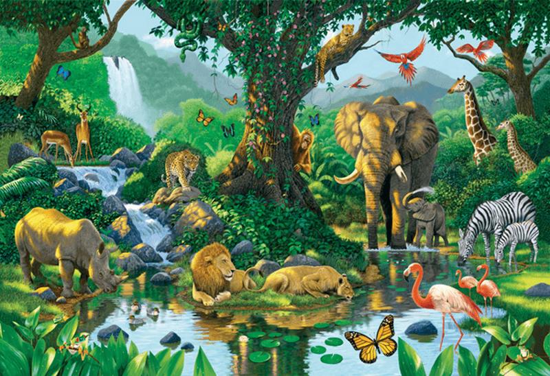 Jungle Tiere