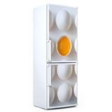 Wandtattoos: eggs 4