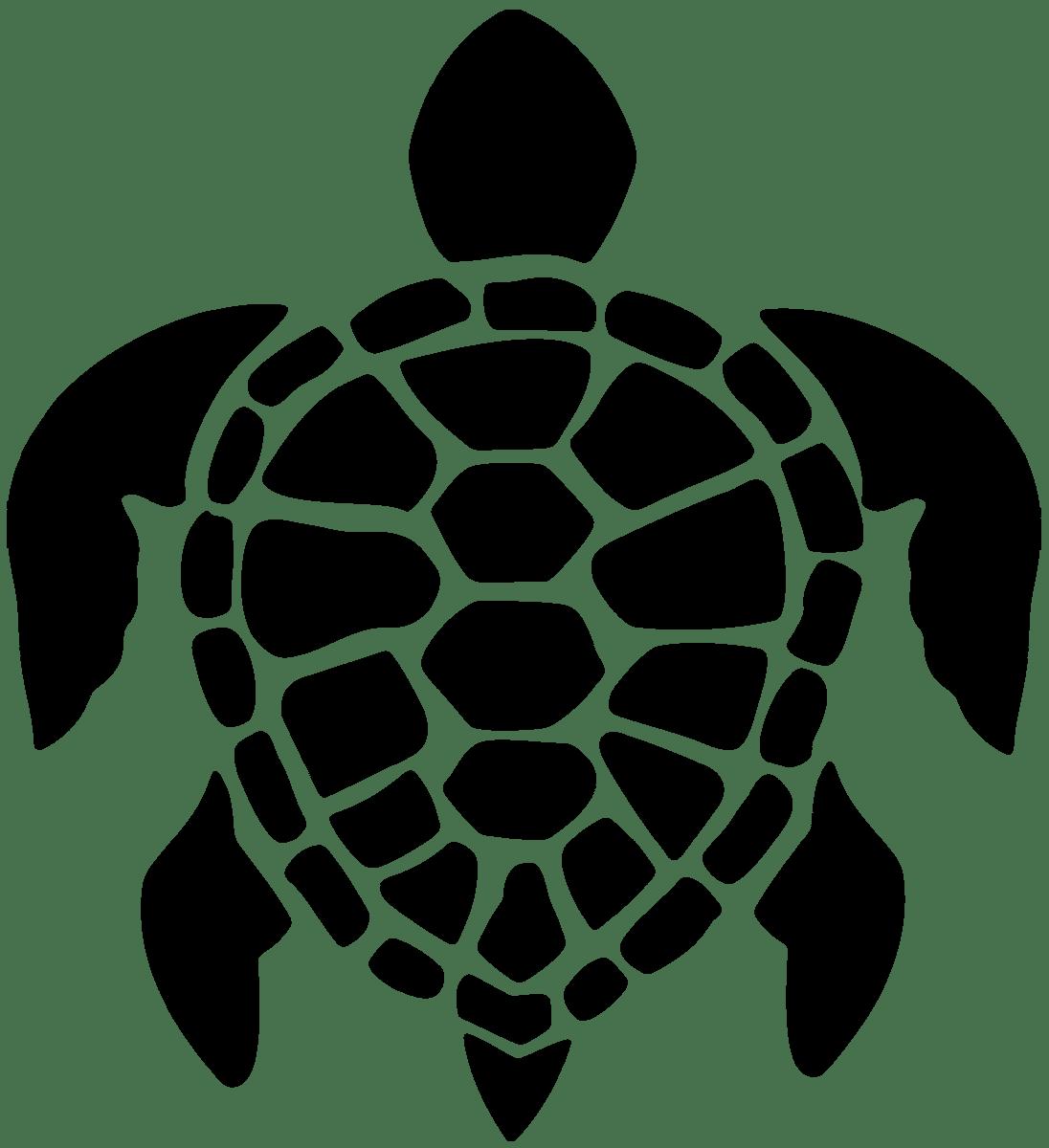 Wandtattoos: Turtle Surf